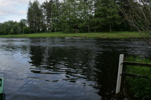 Bridge Pool Carron